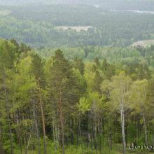 Горный Алтай и Сростки
