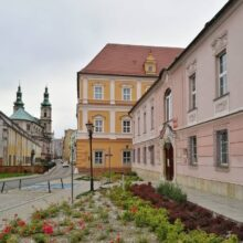 Город Ныса (Польша)